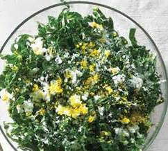 kale anchovy